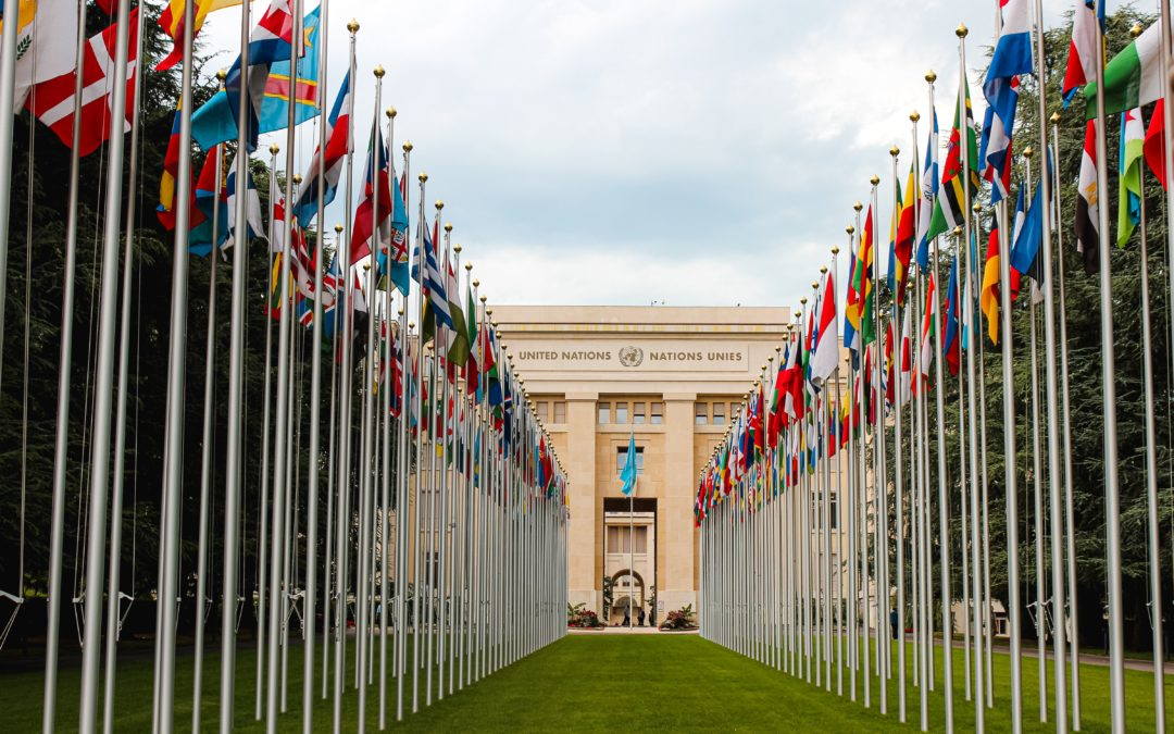 Why the U.N. is making a mockery of human rights
