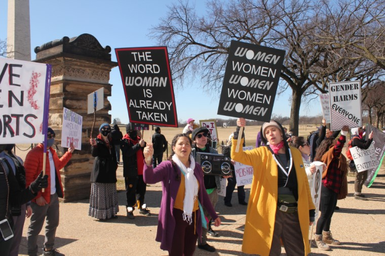 USA: Gender identity and women's rights activists in conflict