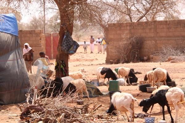 NIGER: Jihadists attack Christians in Niger
